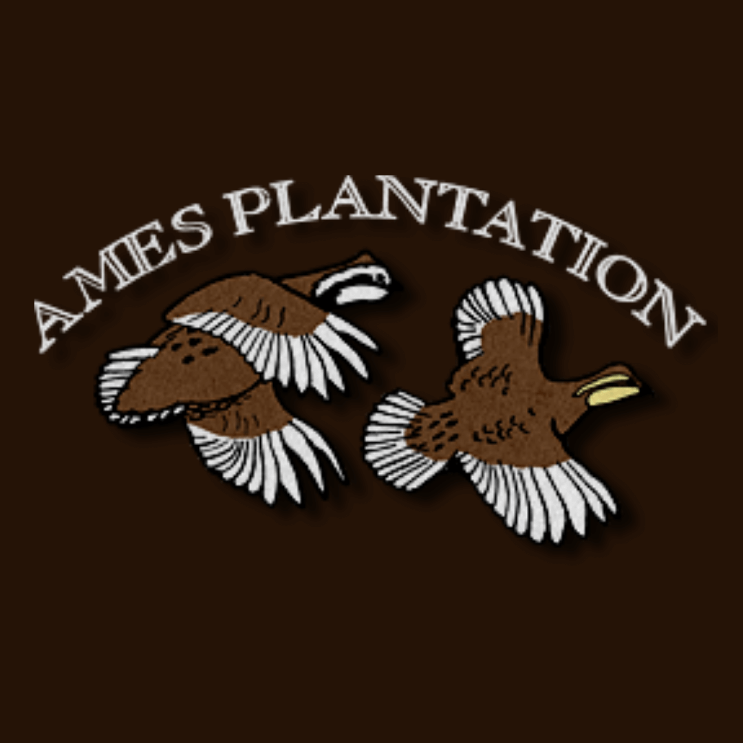 Ames Plantation logo