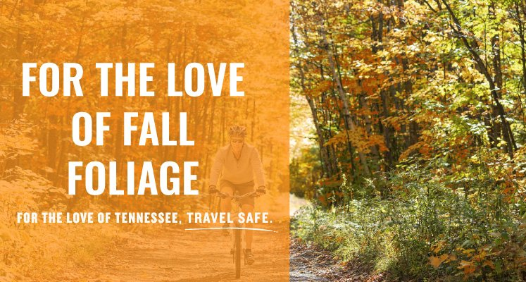 For the love of fall foliage, for the love of Tennessee, Travel Safe